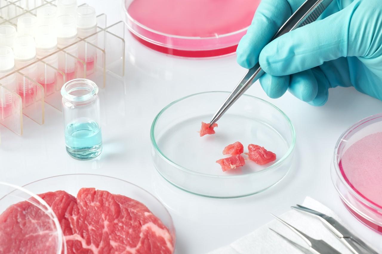 Nestlé collabore avec Future Meat Technologies
